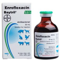 Baytril 2.5% Injection 50ml