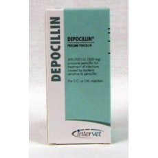 Depocillin 300mg/ml Injection 100ml