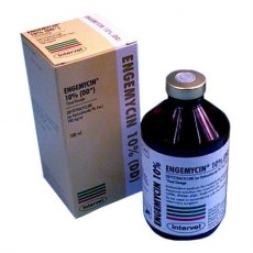 Engemycin 10% (DD) Injection 100ml