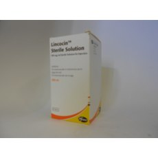Lincocin Sterile  Solution for Injection 100ml