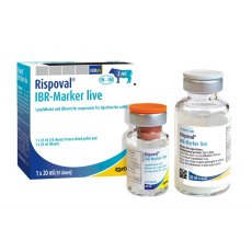 Rispoval IBR Marker LIVE (with applicators)