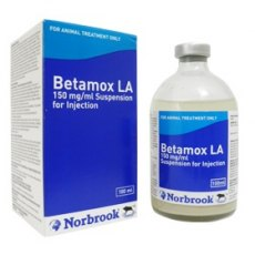 Betamox LA 150mg/ml Injection 100ml
