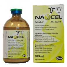 Naxcel 200mg/ml Injection for Cattle 100ml