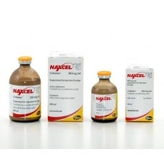 Naxcel 100 mg/ml Injection for Pigs 100ml