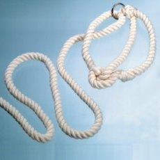 Rope Halter with Ring Half Inch
