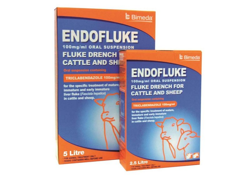 Bimeda Endofluke 100mg/ml Oral Suspension